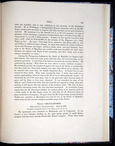 Image of Darwin-F8.2-1838-00125