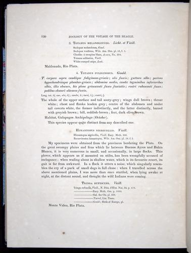 Image of Darwin-F8.2-1838-00130