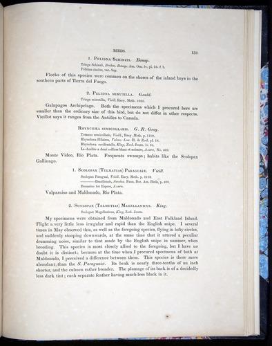 Image of Darwin-F8.2-1838-00131