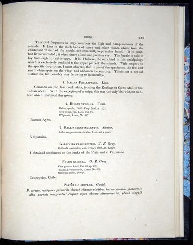 Image of Darwin-F8.2-1838-00133