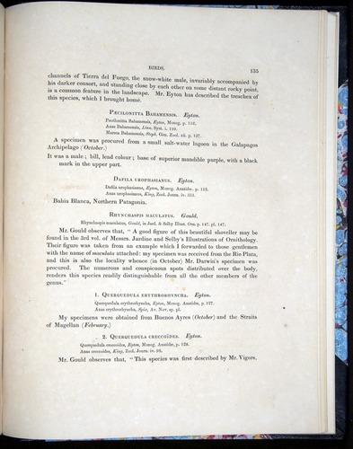 Image of Darwin-F8.2-1838-00135