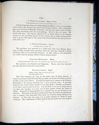 Image of Darwin-F8.2-1838-00137