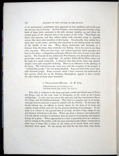 Image of Darwin-F8.2-1838-00138