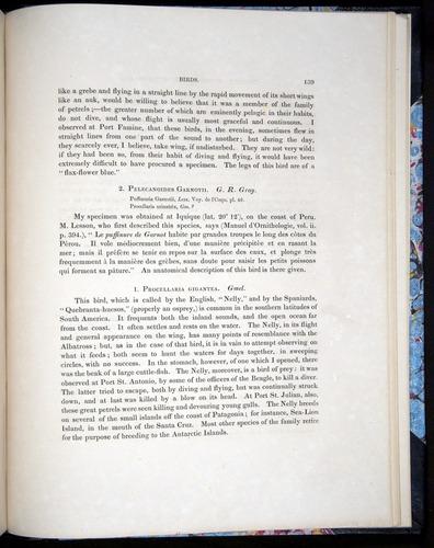 Image of Darwin-F8.2-1838-00139