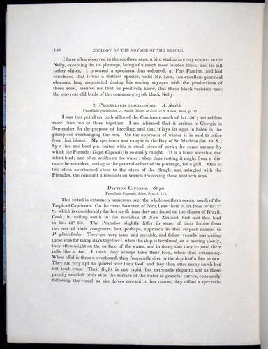 Image of Darwin-F8.2-1838-00140