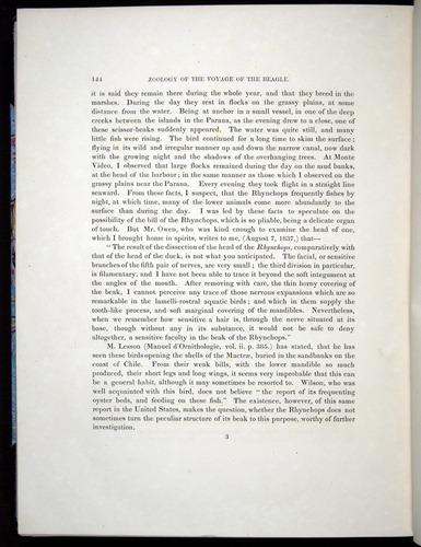 Image of Darwin-F8.2-1838-00144
