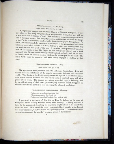 Image of Darwin-F8.2-1838-00145