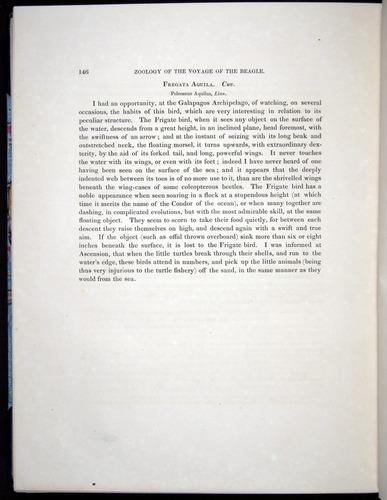 Image of Darwin-F8.2-1838-00146