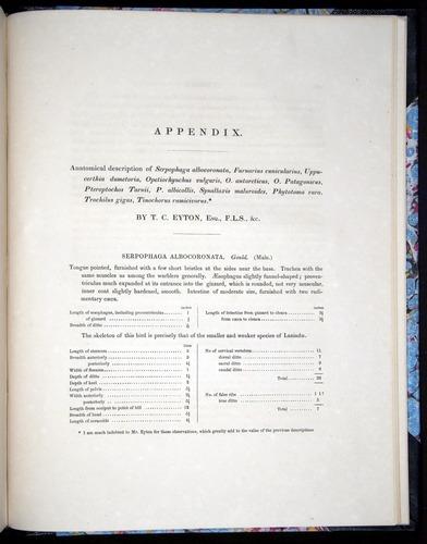 Image of Darwin-F8.2-1838-00147