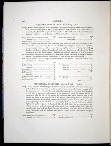 Image of Darwin-F8.2-1838-00148
