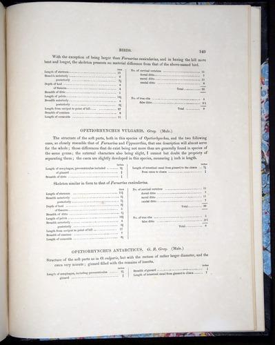 Image of Darwin-F8.2-1838-00149