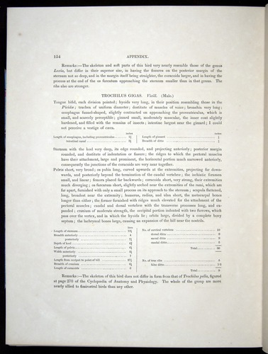 Image of Darwin-F8.2-1838-00154