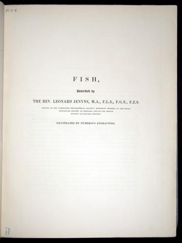 Image of Darwin-F8.3-1838-00000-z01