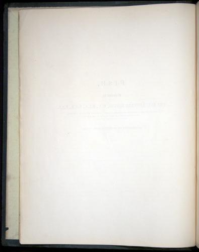 Image of Darwin-F8.3-1838-00000-z02