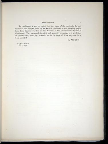 Image of Darwin-F8.3-1838-00000-z09