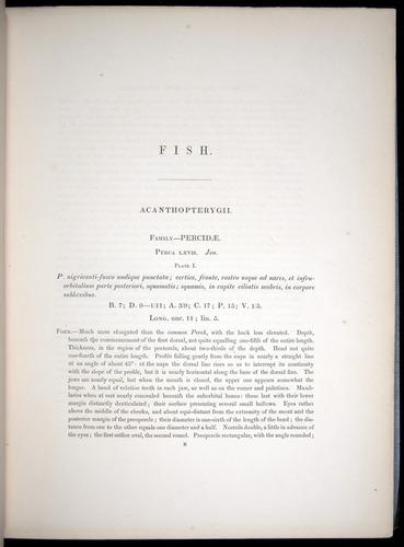 Image of Darwin-F8.3-1838-00001