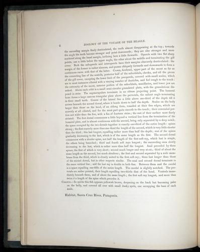Image of Darwin-F8.3-1838-00002