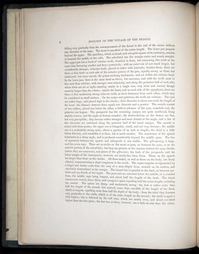 Image of Darwin-F8.3-1838-00004