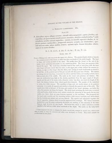 Image of Darwin-F8.3-1838-00008
