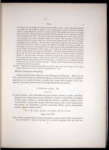 Image of Darwin-F8.3-1838-00009
