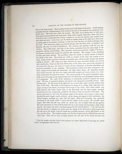 Image of Darwin-F8.3-1838-00010