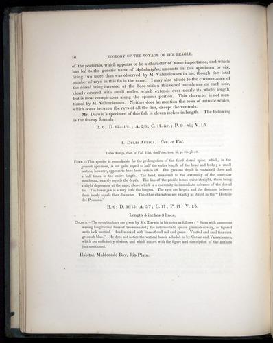 Image of Darwin-F8.3-1838-00016