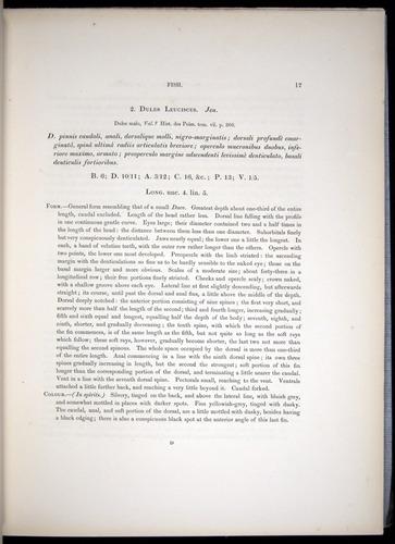Image of Darwin-F8.3-1838-00017