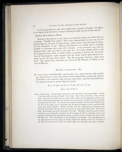 Image of Darwin-F8.3-1838-00018