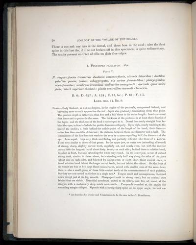 Image of Darwin-F8.3-1838-00020