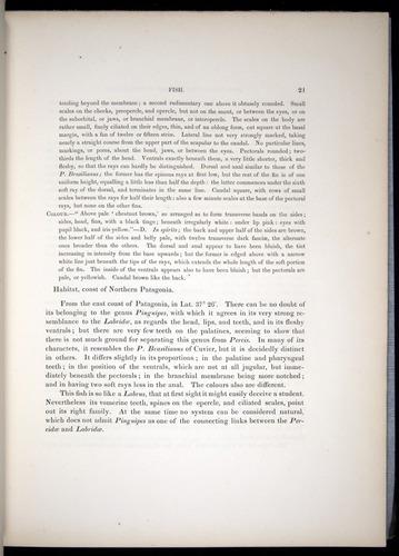Image of Darwin-F8.3-1838-00021