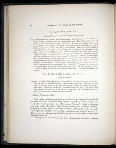 Image of Darwin-F8.3-1838-00022
