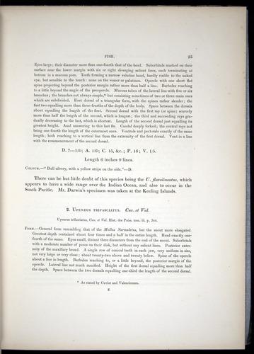 Image of Darwin-F8.3-1838-00025