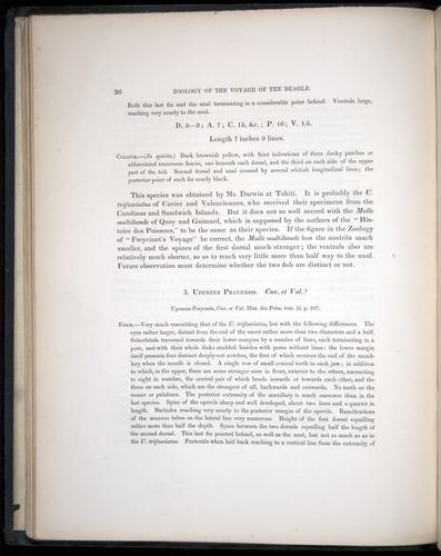 Image of Darwin-F8.3-1838-00026