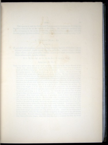 Image of Darwin-F8.3-1838-00028-yf06
