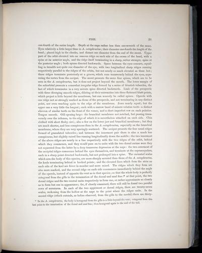 Image of Darwin-F8.3-1838-00031