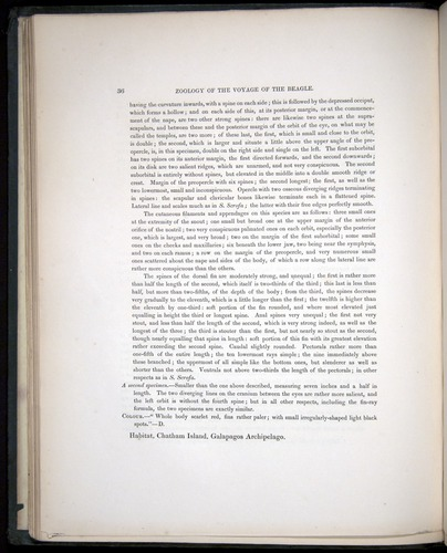 Image of Darwin-F8.3-1838-00036