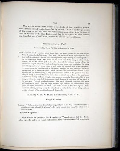 Image of Darwin-F8.3-1838-00037