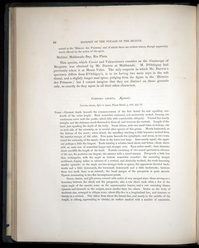 Image of Darwin-F8.3-1838-00042