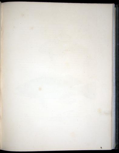Image of Darwin-F8.3-1838-00046-af09
