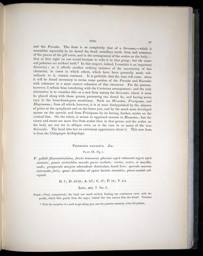 Image of Darwin-F8.3-1838-00047