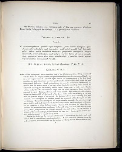 Image of Darwin-F8.3-1838-00049