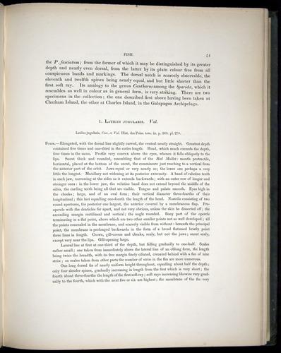 Image of Darwin-F8.3-1838-00051