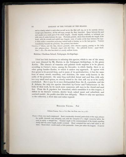 Image of Darwin-F8.3-1838-00054