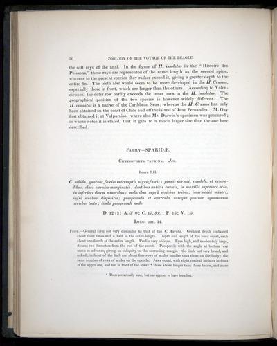 Image of Darwin-F8.3-1838-00056