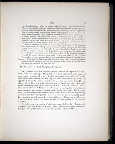 Image of Darwin-F8.3-1838-00057