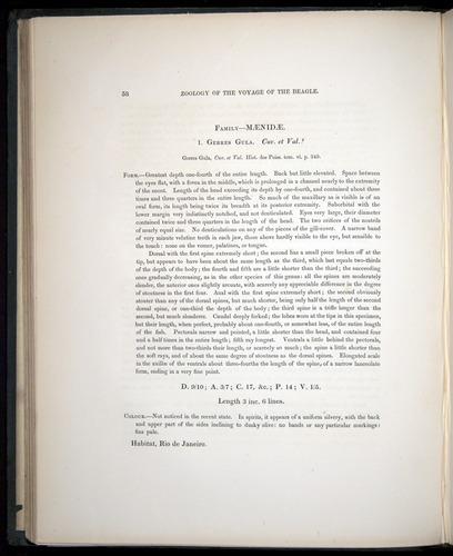 Image of Darwin-F8.3-1838-00058