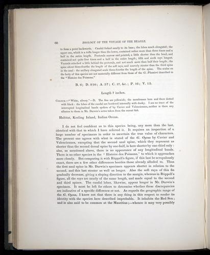 Image of Darwin-F8.3-1838-00060