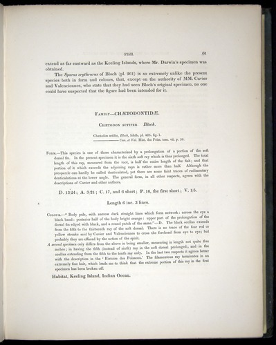 Image of Darwin-F8.3-1838-00061