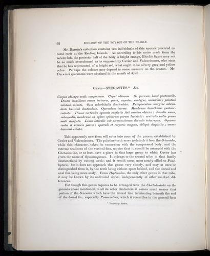 Image of Darwin-F8.3-1838-00062