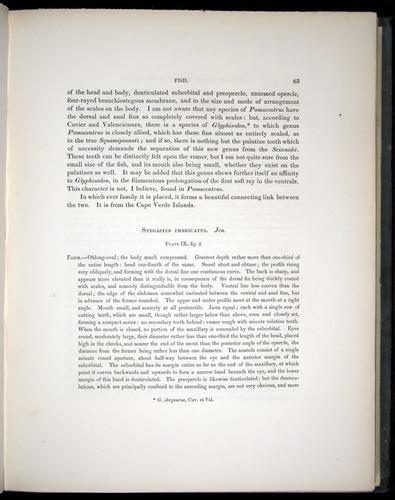 Image of Darwin-F8.3-1838-00063